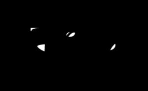 Logo disney entreprise accueillant un élève du Master unic assas